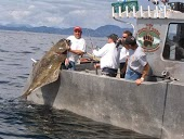 Dalin Charters and Guiding